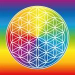 Flower Of Life Rainbow Gradient Color Wheel — Stock Vector #79357248