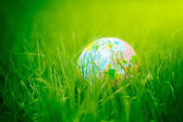 Globe on grass. earth day, environment concept — Стоковое фото