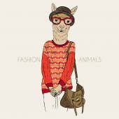 Alpaca dressed up in jacquard pullove — Stock Vector