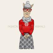 Alpaca hipster in  jacquard pullover — Stock Vector