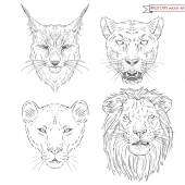 Big wild cats set — Stock Vector