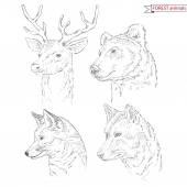 Forest animals set — Wektor stockowy