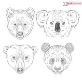 Animal set of bears — Stock Vector