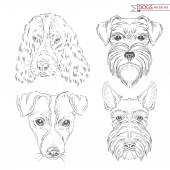 Animal set of dogs — Stock Vector