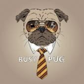 Fashion portrait of busy pug — Stock vektor