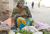 Woman sells khat on a street, Harar, Ethiopia — Stock Photo