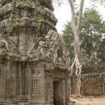 Ruins of Hindu temple in Angkor Wat, Cambodia. — Stock Photo #67914653
