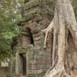 Ruins of ancient Hindu temple in Angkor Wat, Cambodia. — Stock Photo #68293997