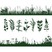 Silhouettes grass — Stock Vector