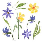 Mavi ve sarı çiçek — Stok Vektör