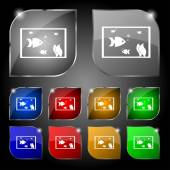 Aquarium, Fish in water icon sign. Set of ten colorful buttons with glare. Vector — Stock Vector
