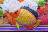 Model tropikalne ryby w akwarium — Zdjęcie stockowe
