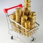 Shopping money — Stock Photo #52890175