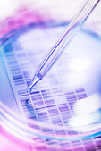 Genetic research — Stock Photo