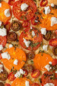 Tomatoes tart with cottage cheese — Stock Photo