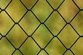 Metallic net with green background — Stock Photo