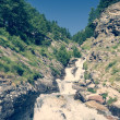 Mountain clean water flowing down a stream. — Stock Photo #64924975