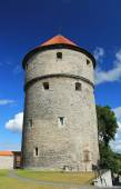 OLD TIME TOWER IN ESTONIA — Stock Photo