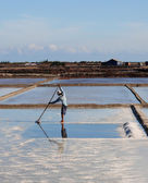 Harvesting salt in Nha Trang, Vietnam — Stock Photo