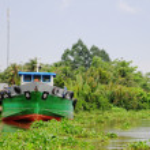 Cargo ship in Mekong Delta — Stock Photo #69294685