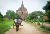 Tourist exploring the archeological site on a horse cart in Baga — Stock fotografie