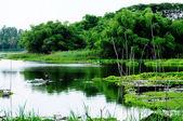 Mountain lake in Chau Doc town — Stock Photo