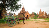 The temples and the horse carriage in Bagan — Stock Photo