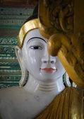 Estatuas de buda en shwedagon pagoda, yangon — Foto de Stock