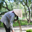 Farmer carrying rice back home — Stock Photo #70240439