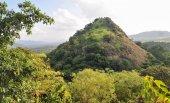 Green grass hill in Sri Lanka — Stock Photo