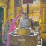 Buddhist devotees bathing Buddha statues at Shwedagon Pagoda — Stock Photo #76235821