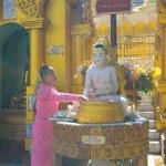 Buddhist devotees bathing Buddha statues at Shwedagon Pagoda — Stock Photo #76256895