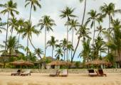 Beautiful beach resort with many coconut trees — Stock Photo
