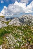 Montanhas — Fotografia Stock
