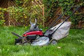 Viking mower — Stock Photo