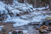 Frozen stream — Stock Photo