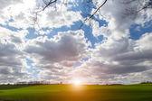 Západ slunce nad zelená pole — Stock fotografie