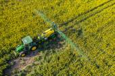 Tractor spraying on the rape field — Stok fotoğraf