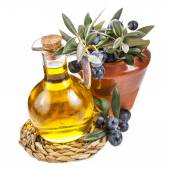 Olive oil and twig with olives — Stock Photo