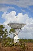 Large radar dish on grand bahama — Stock fotografie