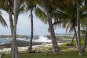 Waves crashing on caribbean beach — Stock Photo