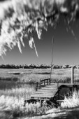 Infrared photo of dock and water — Stock Photo