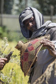 Bee keeping in Ethiopia — Stock Photo
