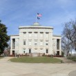 State capitol i north carolina — Stockfoto #63408261