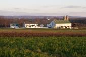 Farm and field in Pennsylvania — Stock Photo