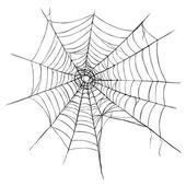 Spider's Web — Stock Vector