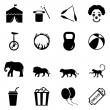Set of Circus Icons — Stock Vector #67789837