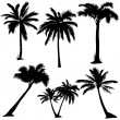 Set of  palms silhouettes — Stock Vector #69295859