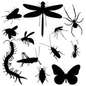 Set of  Insects Silhouettes — Stock Vector