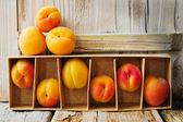 Ripe apricots — Stock Photo